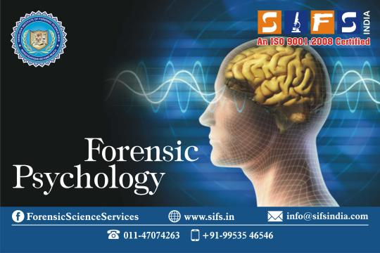 forensic psychology term papers